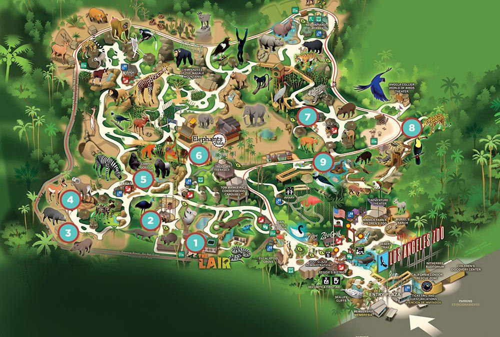 Explore Your Zoo: #SavingSpecies – Zooscape