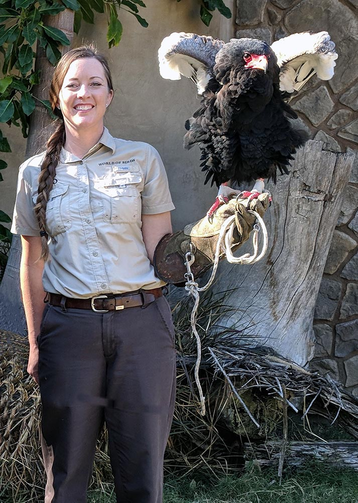 Katie Vincent is part of the Zoo's World of Birds Show staff.